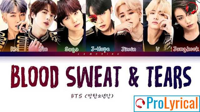 Blood Sweat & Tears Lyrics - BTS