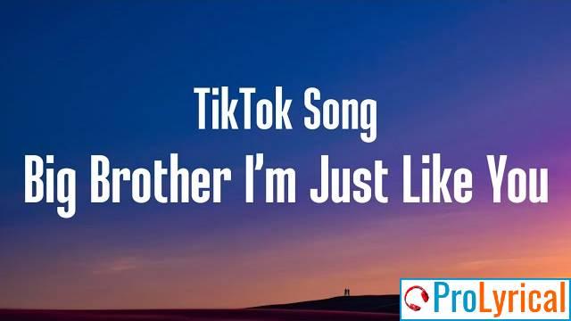 Big Brother I'm Just Like You Lyrics - Tiktok