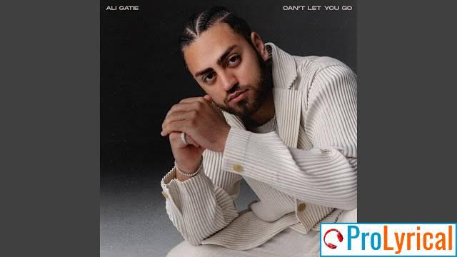 I Can't Let You Go Lyrics - Ali Gatie