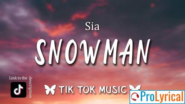 Don't Cry Snowman Lyrics - Sia