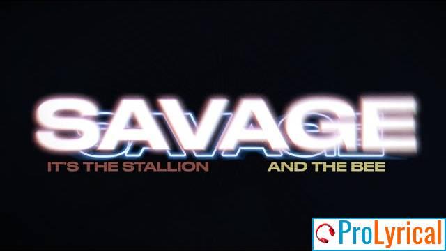 Savage Remix Beyonce Lyrics - Megan Thee Stallion
