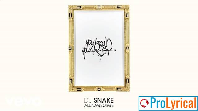 What You Want What You Gonna Do Lyrics - DJ Snake
