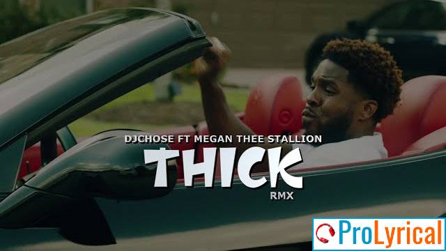 Whats Up Texas Megan Thee Stallion Lyrics - DJ Chose