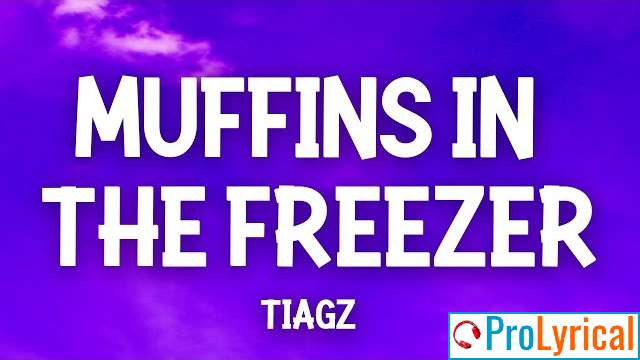 Who In The Hell Put The Muffins In The Freezer Lyrics