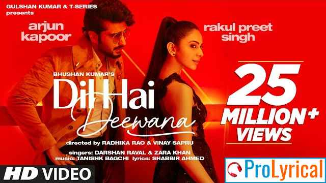 Dil Hai Deewana Lyrics - Darshan Raval & Zara Khan